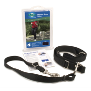 PetSafe Hands-Free Leash Black