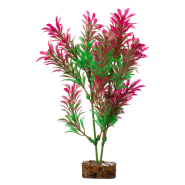 Tetra GloFish Plant Medium Green/Pink