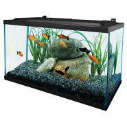 Tetra 10 Gallon Deluxe LED Kit