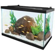 Tetra 20 Gallon Deluxe LED Kit