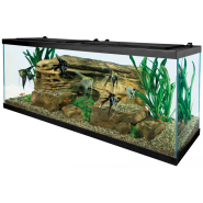 Tetra 55 Gallon Deluxe LED Kit
