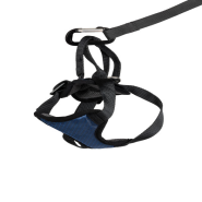 Solvit Deluxe Vehicle Safety Harness SM 6 to 20 lbs