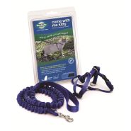 PetSafe Come With Me Kitty Harness & Bungee Leash Medium Roy