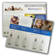 MicrocynAH Sell Sheet