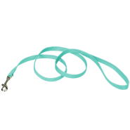 "Coastal Single-Ply Leash Teal 5/8""x6"