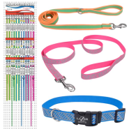 Lazer Brite / Pro Collar & Leash Display