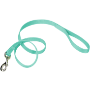 "Coastal Single-Ply Leash Teal 3/4""x4"