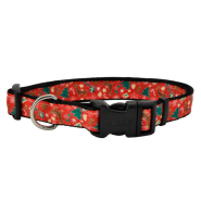 Celebration Christmas Dog Collar 5/8-18