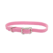 Sunburst Collar w/Bone Buckle Bright Pink 3/8x12""