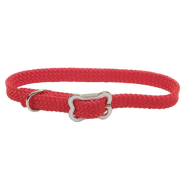 Sunburst Collar w/Bone Buckle Red 3/8x10""