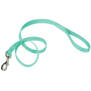 "Coastal Single-Ply Leash Teal 1""x6"
