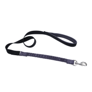"Coastal Bungee Nylon Leash 1"" x 4"