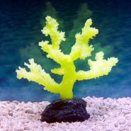 Sporn Yellow Sinularia Coral S Glow in the Dark