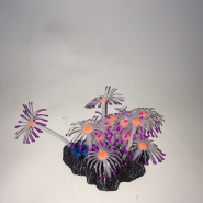 Sporn Purple/Orange Star Polyps Coral Glow in the Dark
