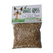 Giggle Grass Oat Grass Seeds 125 gm