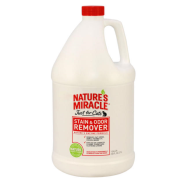 NM JFC Stain & Odor Gallon