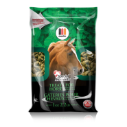 Special Moments Horse Treats Peppermint 1 kg