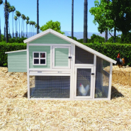 Precision Nantucket Chicken Coop 73.6x31.9x9.25""