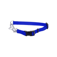 "Adj Check Training Collar w/Buckle 1"" Blue 29"""