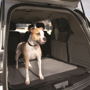 "Bergan Auto Cargo Floor Cover Grey/Black 50""x50"""