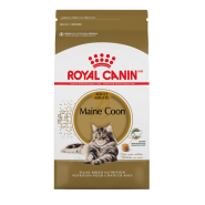 RC FHN Maine Coon 6 lb